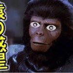 いきなりびっくり猿の惑星!?【オーバーウォッチ10】