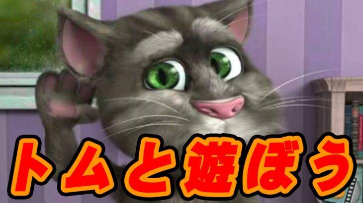 遊べ!カワイイ猫とおしゃべりゲーム実況 【MSSPのその場限りでも楽しければ#22】 【MSSP/M.S.S Project】